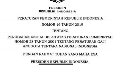 Download PP Nomor 16 Tahun 2019
