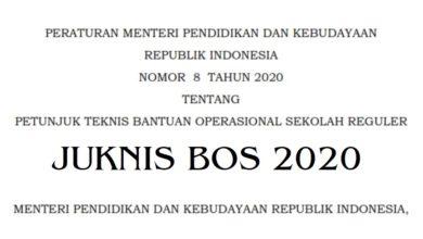 Permendikbud Nomor 8 Tahun 2020 Juknis BOS PDF