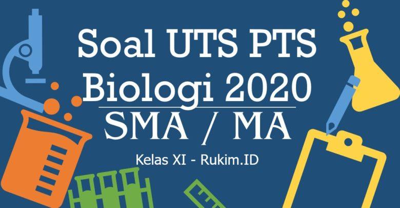 Download Soal PTS Biologi Kelas 11 PDF