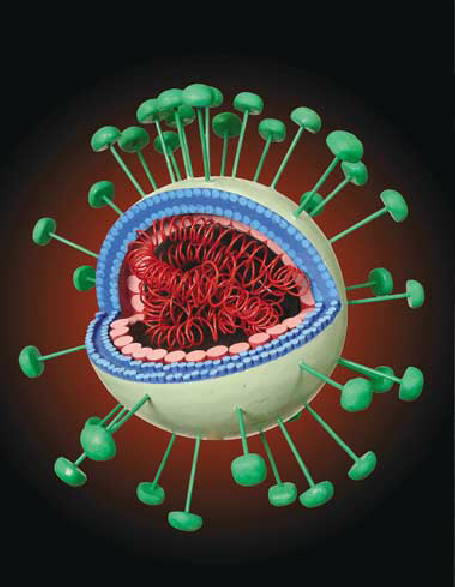 Virus SARS Virus Berbahaya Selain Corona