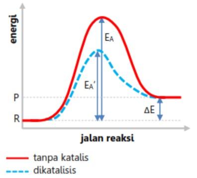 Energi aktivasi reaksi endotermis setelah katalis