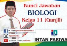 Photo of Pembahasan dan Kunci Jawaban Buku PR Intan Pariwara Biologi Kelas 11 Semester 1 Tahun 2020/2021